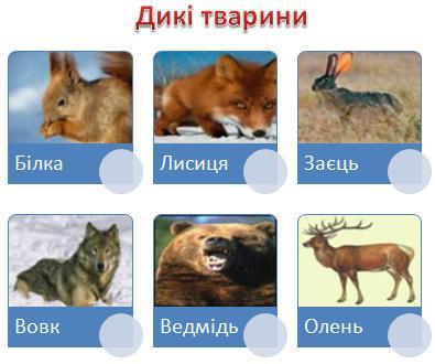 Так деякі тварини стали свійськими